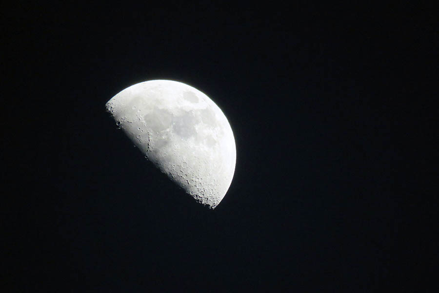 live-on-the-moon